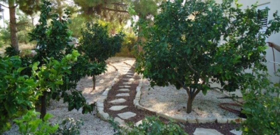 Вилла в лимассоле, кипр